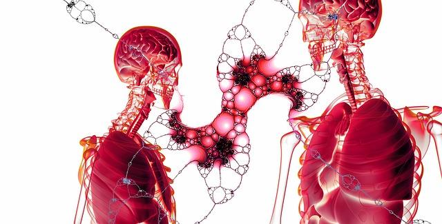 5G Frequenzen wirken auf Organismus