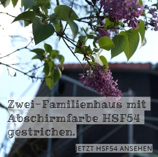 Abschirmfarbe HSF54